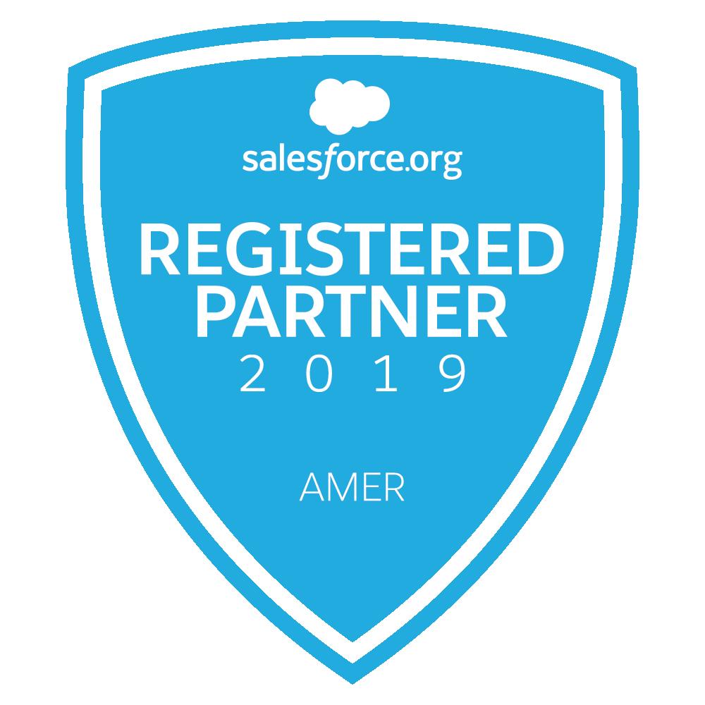 2019 Salesforce.org Registered Partner